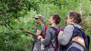 kolme naista tutkimassa puunlehtiä Vision villivihanneskurssiin kuuluvalla retkellä