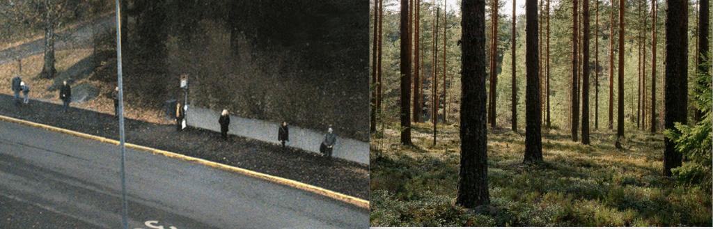 Kuvassa on rinnakkain valokuva suomalaiselta bussipysäkiltä, jossa ihmiset seisovat säntillisesti metrin etäisyydellä toisistaan, sekä suomalaisesta talousmetsästä, jossa puut on taltutettu kasvamaan tasaisin välimatkoin.