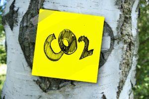 Kuvituskuva Co2 kyltti koivun kyljessä