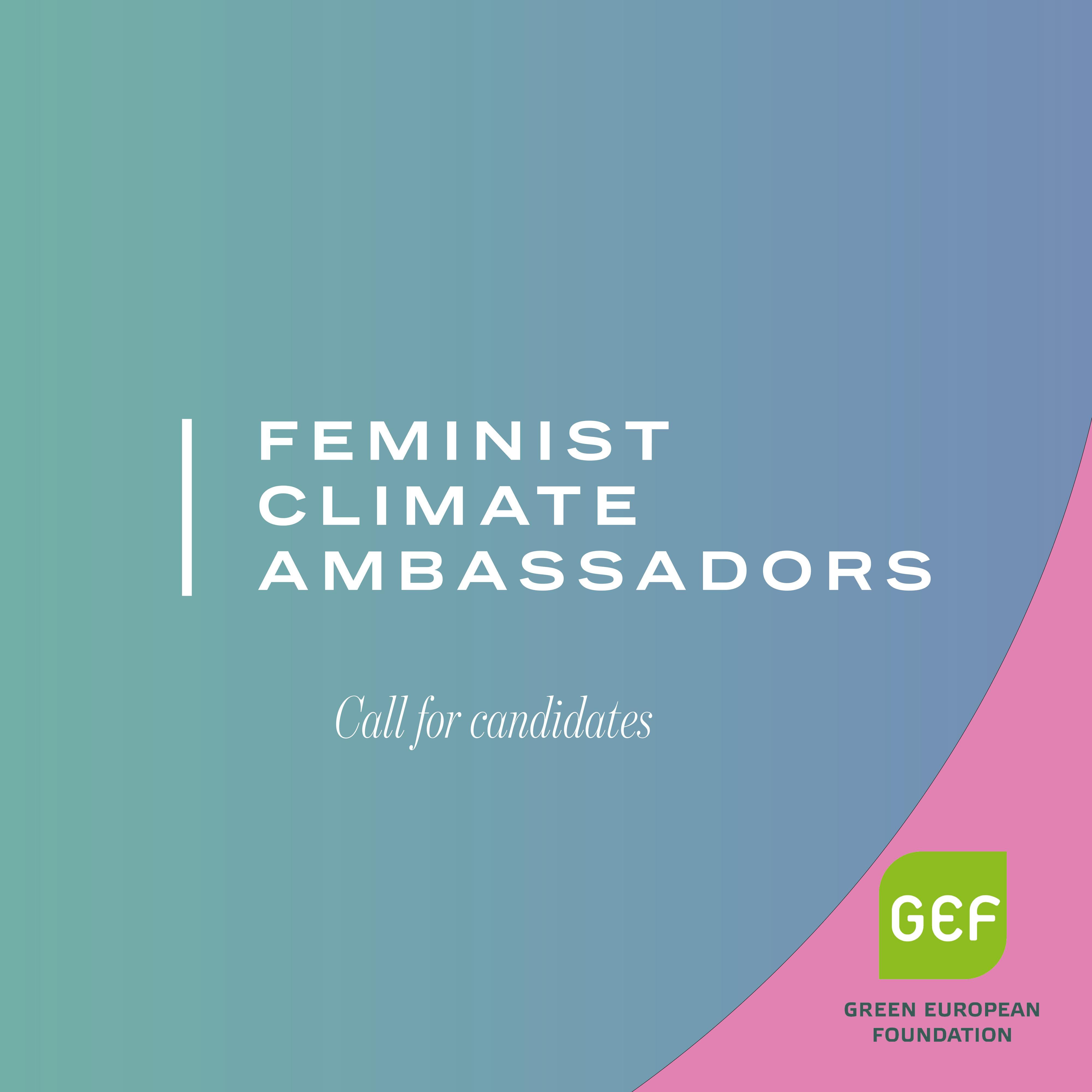 Call for candidates to the feminist climate ambassadors -training programme of 2021.